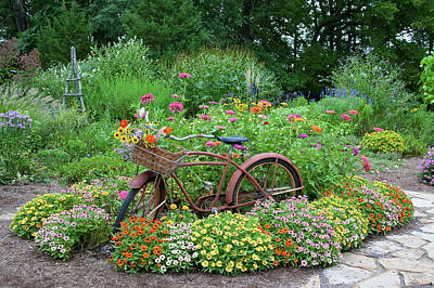 Old Bicycle With Flower Basket Poster by Panoramic Images