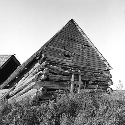 Old Log Building On North Dakota Prairie Poster by Donald  Erickson