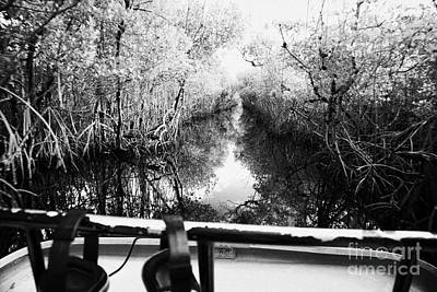 On Board An Airboat Ride Through A Mangrove Jungle In Everglades City Florida Everglades Usa Poster by Joe Fox