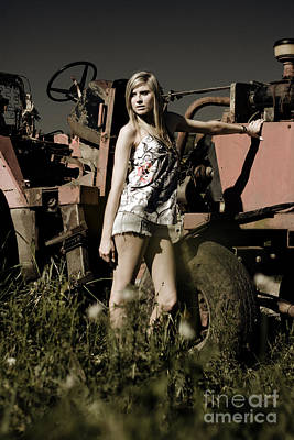 On The Farm At Dusk Poster