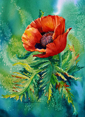Orange Oriental Poppy Poster by Karen Mattson