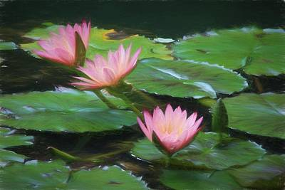 Painted Lilies Poster