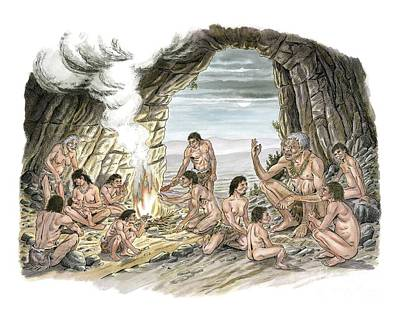 Palaeolithic Human Culture, Artwork Poster