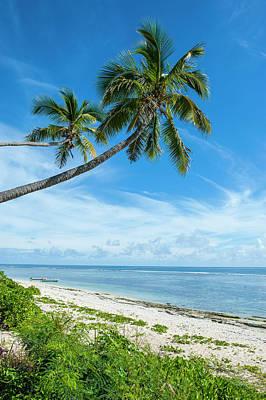 Palm Fringed Kolovai Beach, Tongatapu Poster by Michael Runkel
