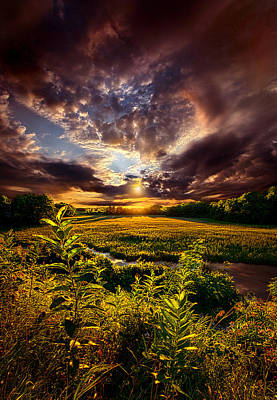 Perspective Poster by Phil Koch