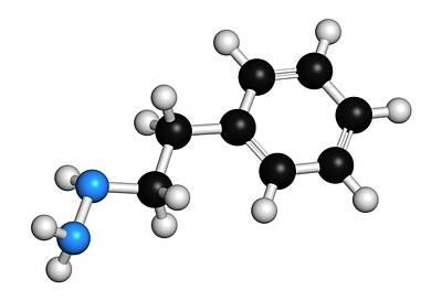 Phenelzine Antidepressant Molecule Poster