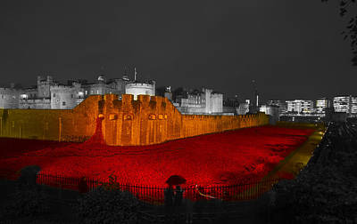 Poppies Tower Of London Night  Poster by David French