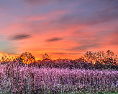 Illinois Prairie Moments Before Sunrise Poster