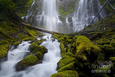 Proxy Falls Poster by Keith Kapple