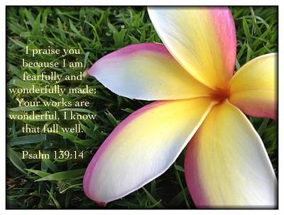 Psalm 139 14 Poster