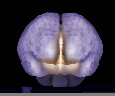 Psychic Brain, Conceptual Image Poster by Science Photo Library