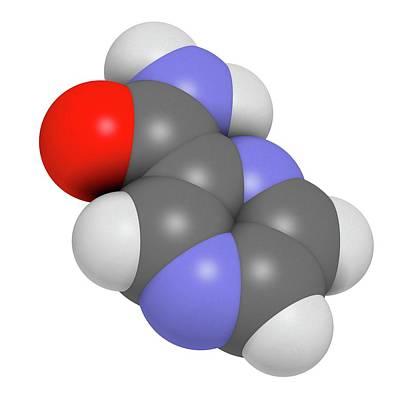 Pyrazinamide Tuberculosis Drug Molecule Poster by Molekuul