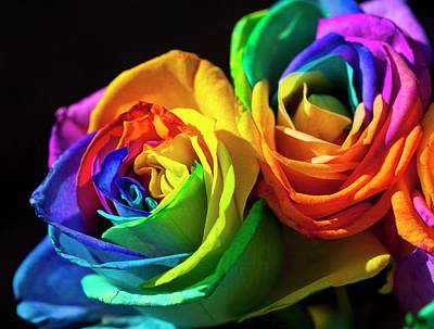 Rainbowed Roses Poster by Ian Gowland