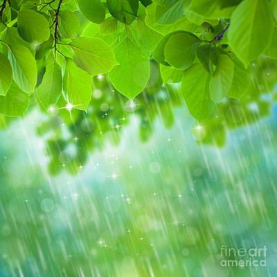 Rainforest Poster by Atiketta Sangasaeng