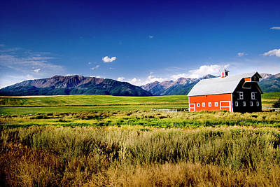 Red Barn In Field Near Joseph, Wallowa Poster by Nik Wheeler