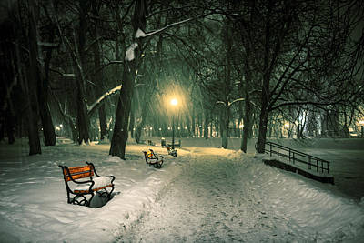 Red Bench In The Park Poster by Jaroslaw Grudzinski