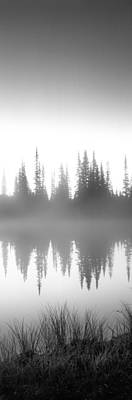 Reflection Of Trees In A Lake, Mt Poster