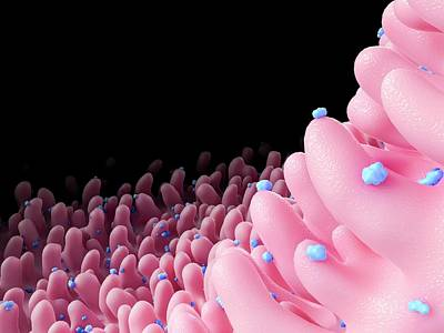Rhinovirus Poster by Maurizio De Angelis