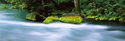 River Flowing Through A Forest, Big Poster by Panoramic Images