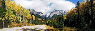 Road Passing Through A Forest, Yoho Poster by Panoramic Images