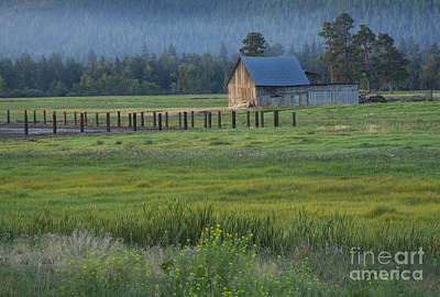 Rural Montana Poster by Idaho Scenic Images Linda Lantzy