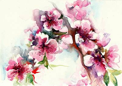 Sakura - Cherry Tree Blossom Watercolor Poster by Tiberiu Soos