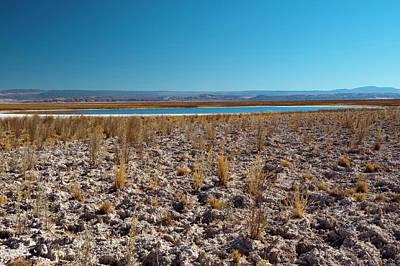 Salar De Atacama, Atacama Desert, Chile Poster