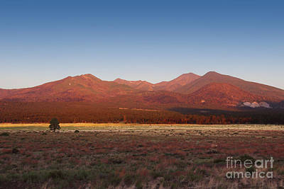 Poster featuring the photograph San Francisco Peaks Sunrise by Jemmy Archer