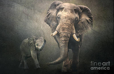 Poster featuring the photograph Save The Elephants by Brian Tarr