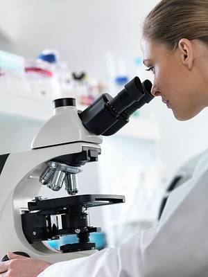 Scientist Using Microscope Poster