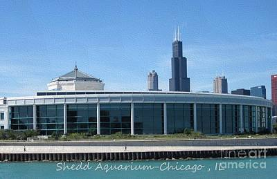 Poster featuring the photograph Shedd Aquarium by Kathie Chicoine