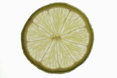 Slice Of Lime, Backlit Poster