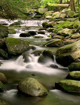 Smoky Mountain Stream Poster by Cindy Haggerty