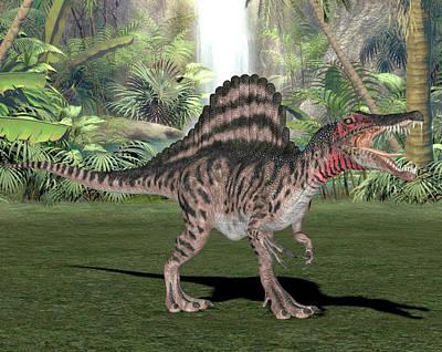 Spinosaurus Dinosaur Poster by Friedrich Saurer