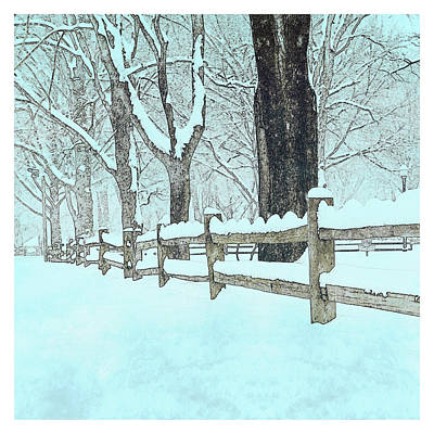 Split Rail Blues Poster by John Stephens