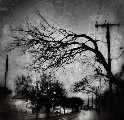 Spooky Tree Poster by Toni Martsoukos