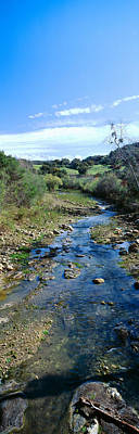 Spring Creek In Upper Ojai, California Poster by Panoramic Images