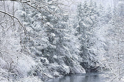 Spring Snow Along Gauley River Poster by Thomas R Fletcher