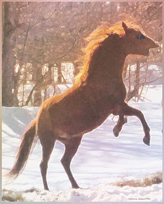 Stallion Poster by Patricia Keller
