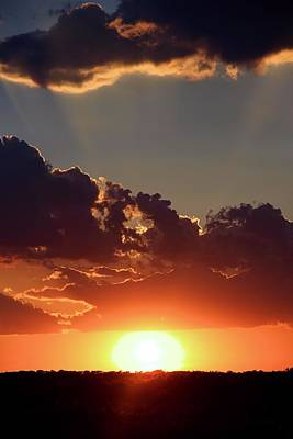 Poster featuring the photograph Sunset by Elizabeth Budd