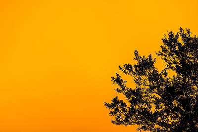 Sunset Poster by Matt Owen