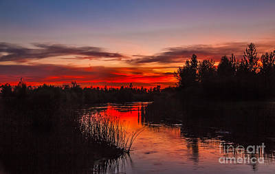Sunset Reflections Poster by Robert Bales