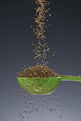 1 Tablespoon Celery Seed Poster
