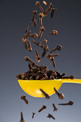 1 Tablespoon Whole Clove Poster by Steve Gadomski