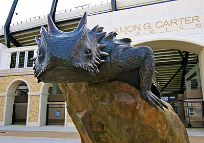Tcu Horned Frogs..fear The Frog Poster