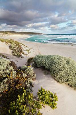 The Coastline At Hanson Bay On Kangaroo Poster by Martin Zwick