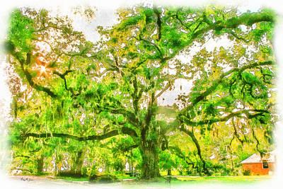 Landscape - Tree - The Old Oak Tree Poster by Barry Jones