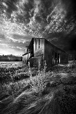 There Was A Time Poster by Phil Koch