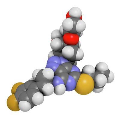 Ticagrelor Platelet Inhibitor Drug Poster by Molekuul
