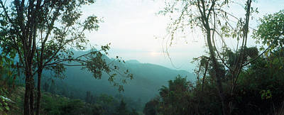 Trees On A Hill, Chiang Mai, Thailand Poster by Panoramic Images
